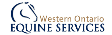Western Ontario Equine Services